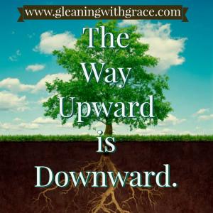 The way upward is downward